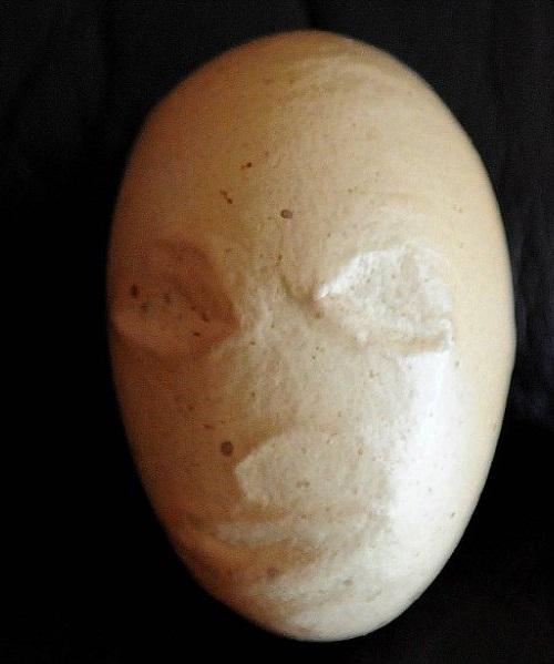 Aliens creepy face imprinted on egg