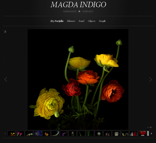 Beautiful flowers by Belgian professional photographer Magda Indigo