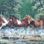 Typically, horse sleeps two and half to three hours a day