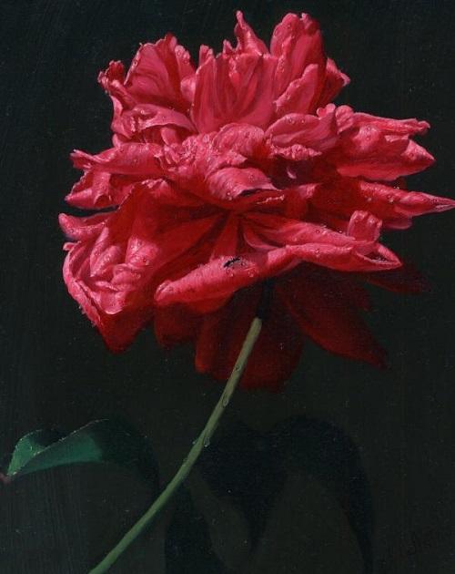 Beautiful rose in painting by Russian artist Alexei Antonov