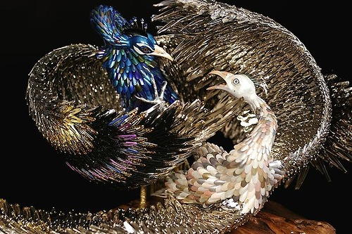 Laurel Roth peacocks