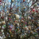 Creative Easter eggs decorate the tree in the garden of Mr. Kraft. Saalfeld, Eastern Germany