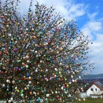 Growing in Saalfeld, Eastern Germany Apple tree decorated with Easter eggs