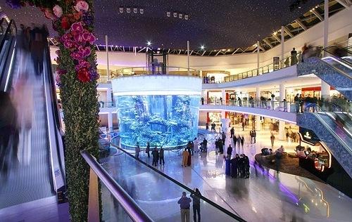 Gigantic aquarium opens in Casablanca