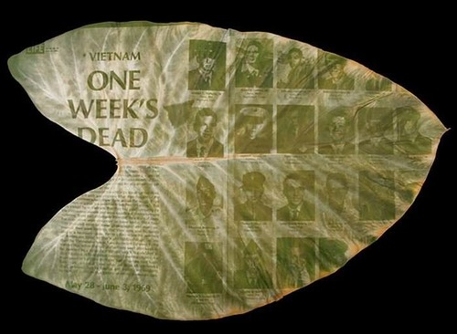 Chlorophyll Prints of the Vietnam War on the tropical plants by Binh Danh