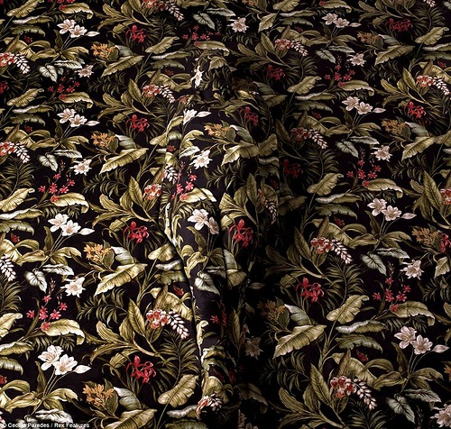 Illusion of disappearing in paintings of Peruvian artist Cecilia Paredes camouflage painting