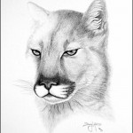 Wild cat. Mouth painting by American artist Doug Landis