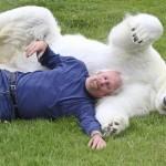 Adorable Polar bear Agee and Mark Abbot Dumas