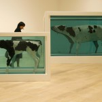 """The representative of the media looks at Damien Hirst's work """"Divided Mother and Child"""""""