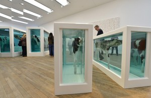 Visitors watch the work Mother and Child Divided by British artist Damien Hirst at the gallery Tate Modern in London