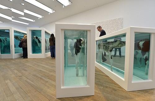 When Death is art Damien Steven Hirst