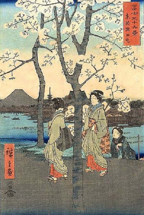 Woodblock print of Mount Fuji and cherry blossom from 36 Views of Mount Fuji by Hiroshige.