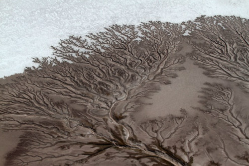 aerial shots of dried up rivers in California and Mexico. The photographer, Adriana Franco