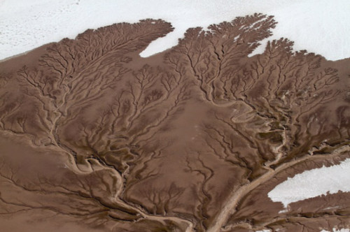 aerial shots of dried up rivers in California and Mexico.  photo by Adriana Franco