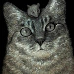 Funny image of a cat and a mouse