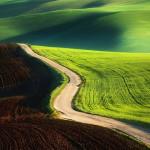 Green fields by Krzysztof Browko, Polish photographer
