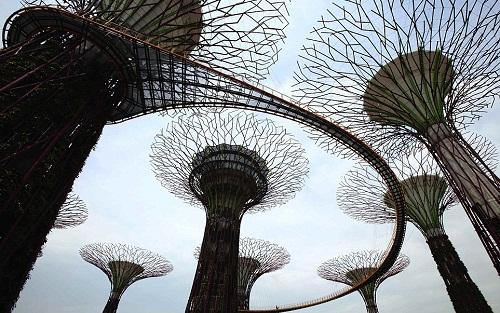 Artificial woodland in Singapore-Walkway in heavens