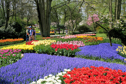 Keukenhof The World S Largest Flower Garden Beauty Will Save