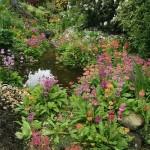 Maple Glen gardens
