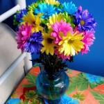 Flower of rainbow colors