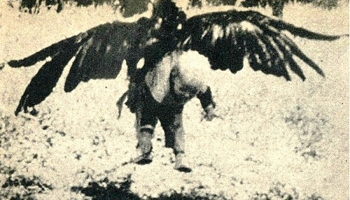 Incredible story about Norwegian girl Armindo Hansen and an eagle