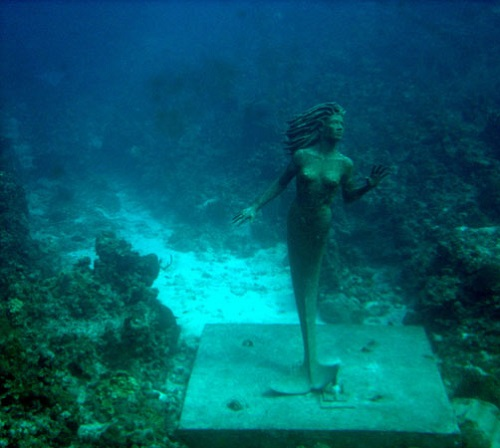 Bronze Cayman Mermaid