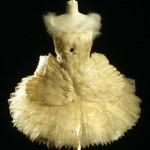 Costume Swan