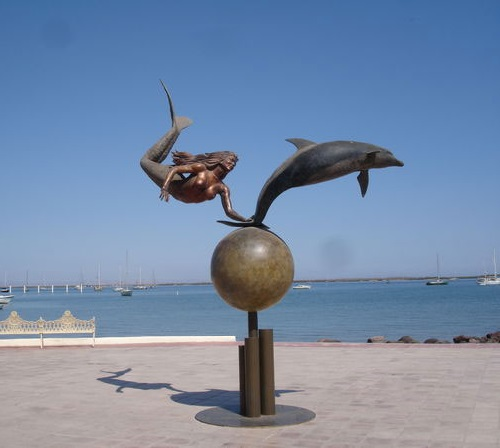 Flying Mermaid Dolphin