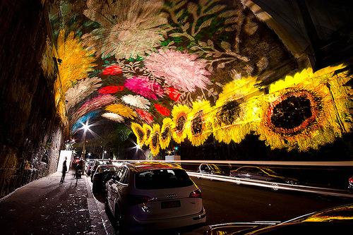 Beautiful Festival of Light in Sydney
