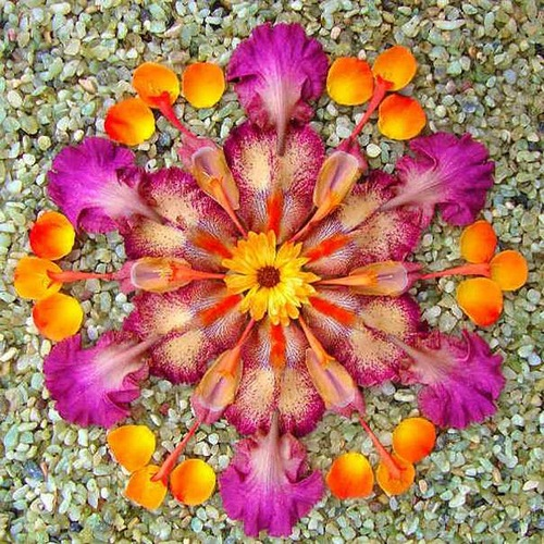 Gorgeous Flower mandala