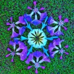 Inspirational Flower mandala