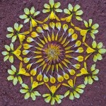 Art of Mandala by Kathy Klein