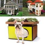 A set of beautiful Luxury dog houses