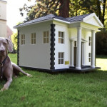 A dog next to his wonderful house