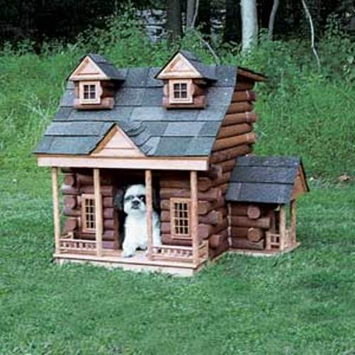 Beauty will save Luxury doghouses  Beauty will save