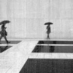 Architecture and Rain