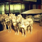 cavalry horses