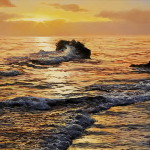 Hyperrealistic seascapes by Spanish artist Alfredo Navarro Montllor