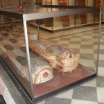 An extensive exhibition of antiquities is in the halls on the first floor of the New Hermitage