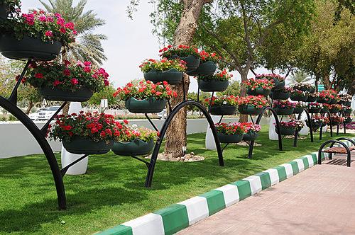 Al Ain Paradise in Arab Emirates