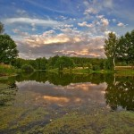 The pond at the forest. Beautiful landscapes by Aleksandr Danilin