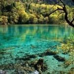 Five Flower Lake in Jiuzhaigou Valley
