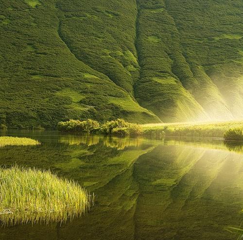 Nature photography by Sergey Novozhilov