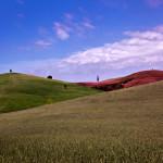 Hills. Nature by self-taught photographer Sergey Novozhilov
