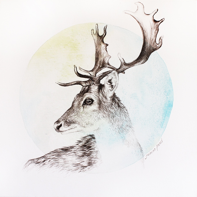 Beauty will save Pencil drawings by Jaimee Paul - Beauty ...