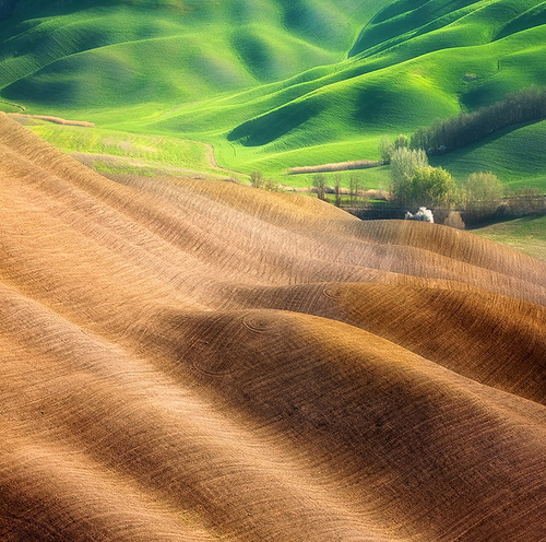 Idyllic views of fields by Marcin Sobas