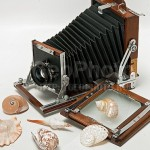 Sea shells and retro camera. Work by Russian photographer Alexander Knyazev