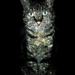 """""""A cat has absolute emotional honesty: human beings, for one reason or another, may hide their feelings, but a cat does not."""" — Ernest Hemingway (from """"For Whom the Bell Tolls""""). Inspirational series of Celestial Cats created by British freelance artist Boya Latumahina (Zippora Lux)"""