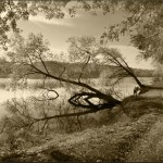 Silence. photographer Aleksandr Kitsenko