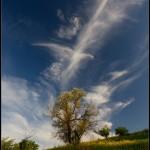 The patterns of sky. photo by Aleksandr Kitsenko